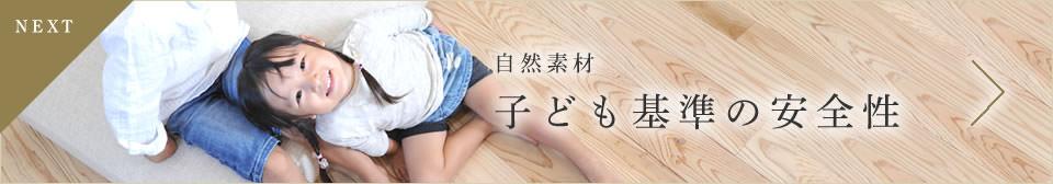 Next: 子ども基準の安全性